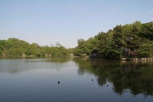 Nerima_Syakujii_park_sampoji_pond